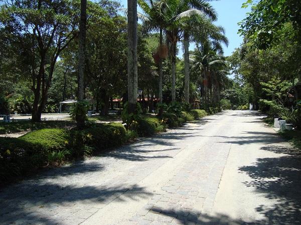 Alamedas da Hípica Santo Amaro, local do Clássicos do Brasil