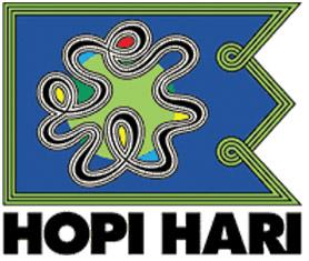 hopi-hari (1)