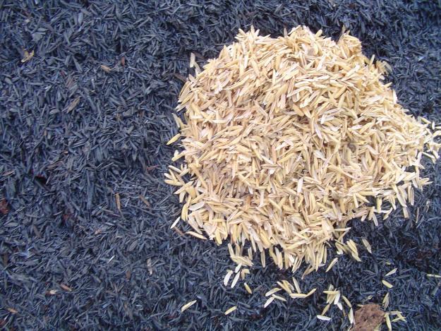 Casca-de-arroz-queimada